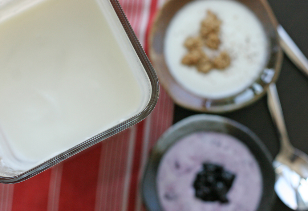 Freshly made yogurt